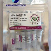 کیت سنتز cDNA محصولی از یکتا تجهیز (cDNA synthesis Kit)