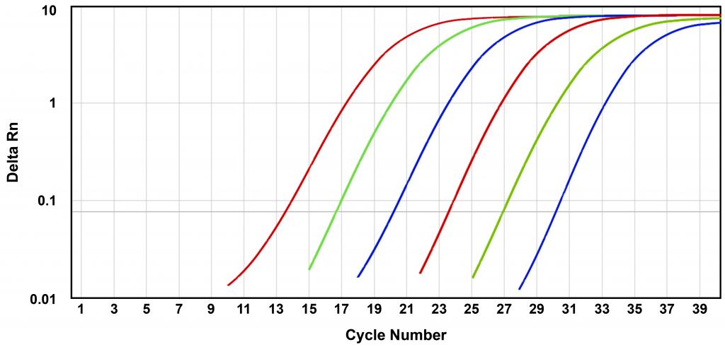 qPCR Plot [Delta Rn = (reporter signal/reference dye signal) - baseline]
